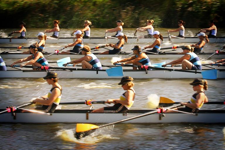 Photo of a rowing regatta