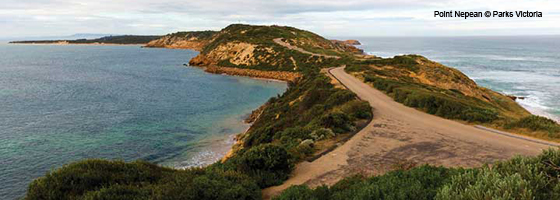 Point Nepean - Parks Vic