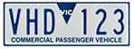 exampple VHD registration plate
